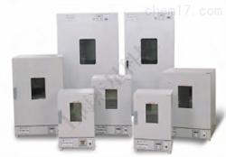 SXE000009立式电热恒温鼓风干燥箱