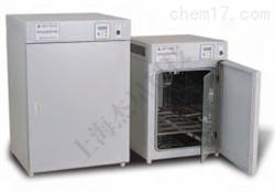SXE000059电热恒温培养箱