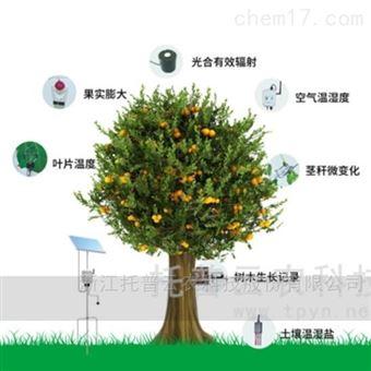 TP-ZWSL系列植物生理生態監測系統