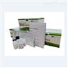 IL-17,人白细胞介素17ELISA试剂盒
