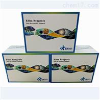 β1-AR,人β1肾上腺素受体抗体ELISA试剂盒