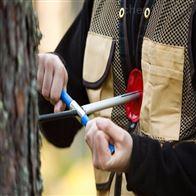 SYS-CO树木锥型生长检测仪