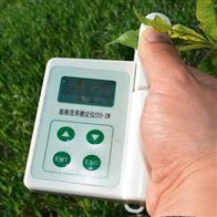 SYS-S06植物叶片温差测量仪
