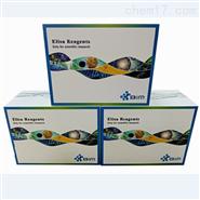 兔子肾上腺髓质素(ADM)ELISA试剂盒