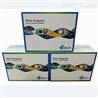 FN,小鼠纖連蛋白酶聯免疫試劑盒多少錢