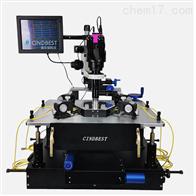 CT-6CT-6非真空高低溫探針台