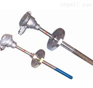 耐磨热电偶 WREN-430