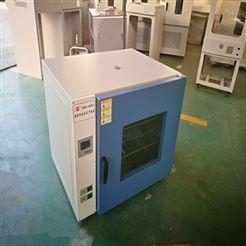杭州 DHG-9123A台式鼓风干燥箱