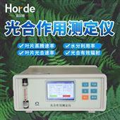 HED-GH20植物光合作用测定仪