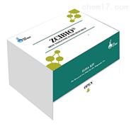 鱼支链氨基酸转氨酶2(BCAT2)ELISA试剂盒