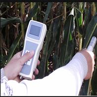 SYE-YH01植物冠层红外测温仪