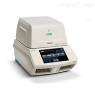 T100 PCR儀