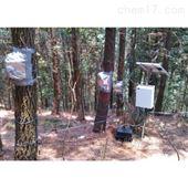 SF-L四针茎流测量系统