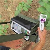 SYC植物蒸腾速率测量仪