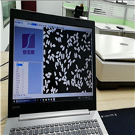 SZDMW-A大米外观品质检测仪