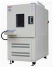 XF/DW-100L低温低湿试验箱生产厂家