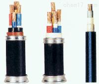 ZR-VV22耐火电力电缆