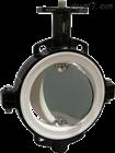 美国Posi-flate充气阀座蝶阀原装正品