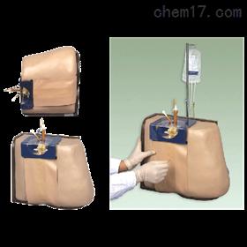 脊柱穿刺模型|临床诊断实训模型