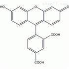 荧光标记试剂 5-FAM