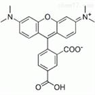 荧光标记试剂 5-羧基四甲基罗丹明