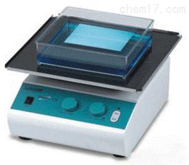 Labnet数字摇床S1000