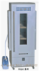 RQX-300智能人工氣候箱