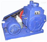HG08-2X-8A双级旋片式系列真空泵 双级结构真空泵 真空干燥过滤真空泵