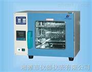 101系列电热鼓风干燥箱-湘潭湘科仪器