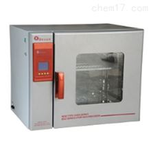 BGZ-420液晶程控電熱鼓風幹燥箱--上海博迅