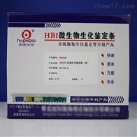 HBIS01HBI沙门氏菌生化鉴定条(SN)
