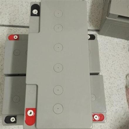 伊顿蓄电池LA12-65 12V65AH 免维护铅酸