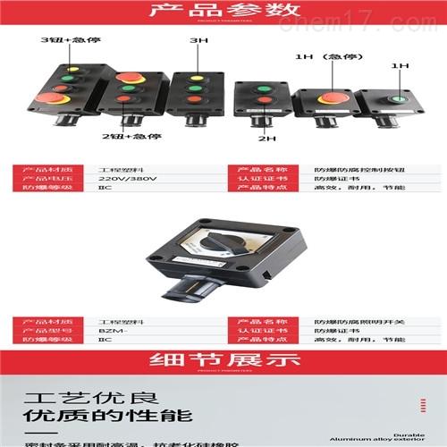 防爆防腐照明开关ZXF8030/51-10a(IIC)