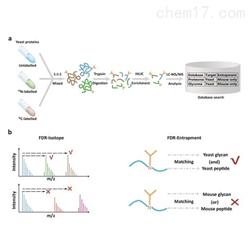 蛋白组学服务