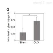 定量蛋白組學服務
