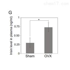 定量蛋白组学服务