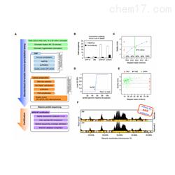 chip-seq蛋白技术服务