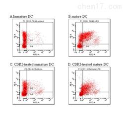 JRD872流式检测细胞服务