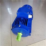 BMA紫光铝合金刹车电机