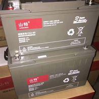 12V100AH山特蓄电池C12-100全新正品