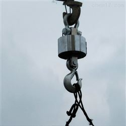 OCS-HD电子直视吊秤20吨