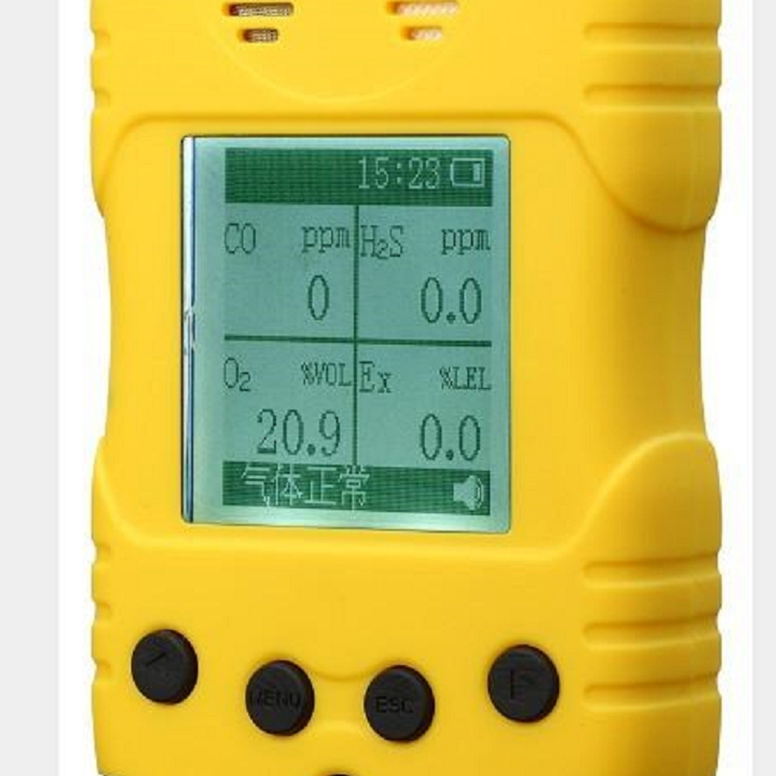 新型便携式一氧化碳检测仪