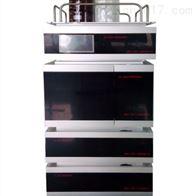 GI-3000-12二元高压液相色谱仪