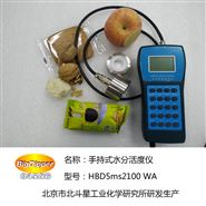 水分活度仪HBD5ms2100
