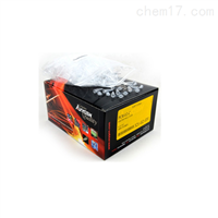 PCR管(平盖)爱思进PCR-02-C0.2ml