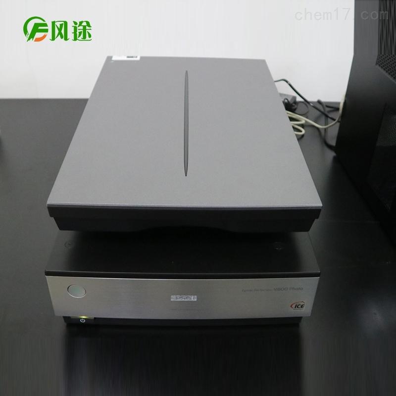 植物根系扫描系统