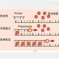 荧光定量PCR实验服务