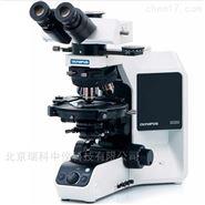 奧林巴斯偏光顯微鏡BX53P的特征