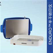 美国Labnet ENDURO半干转印仪E2020-SDB