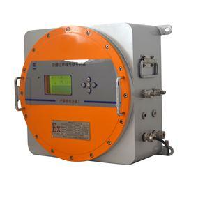 隔爆气体分析仪